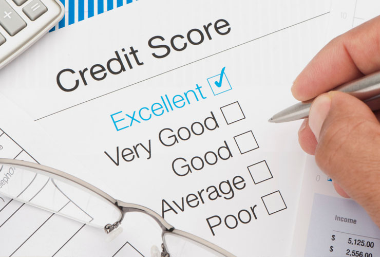 Access Your Business Credit Reports - The Business Credit Experts